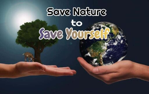 Save Nature to save yourself